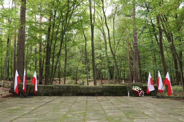 """Miejsce pamięci tzw. Lisie Jamy w lesie """"Kotwica"""" w Miętnem. Flagi państwowe, znicze na grobach i wieniec."""